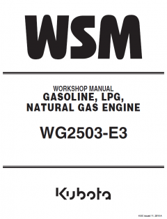 repair manuals Kubota WG2503-E3 Gasoline, LPG, Natural Gas Engines Workshop Manual PDF