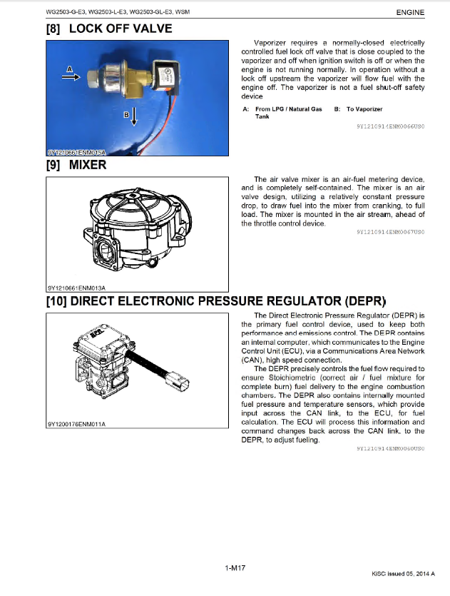Problems With Natural Gas Engines